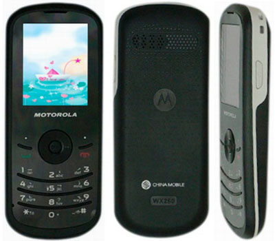 All About U  Motorola WX161