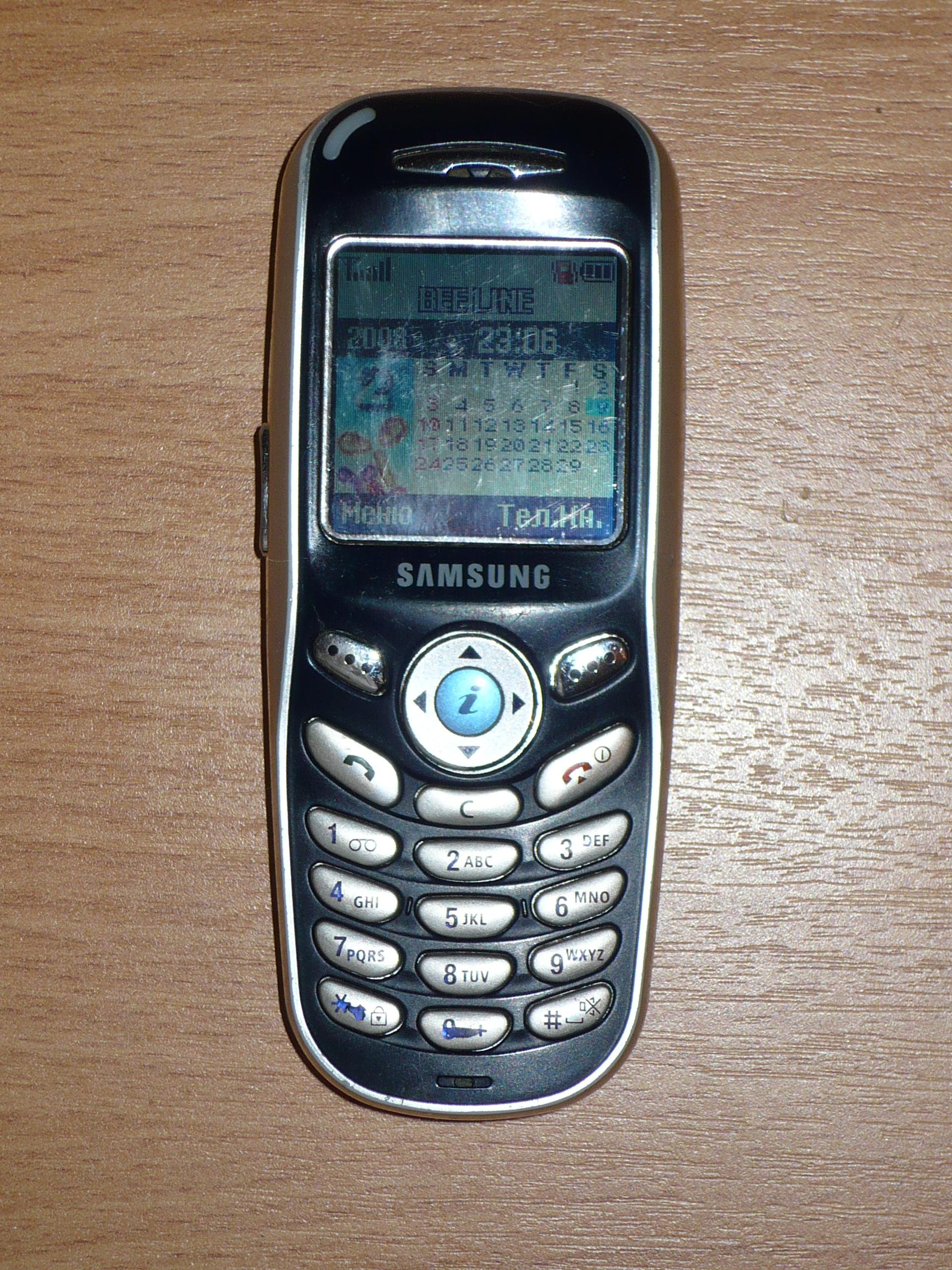 File Samsung SGH X100 jpg   Wikimedia Commons